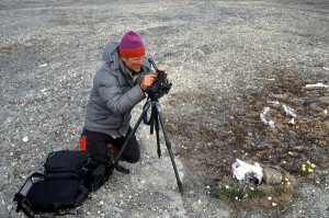 Gaylen Rowell photographing research site in Pearyland, 1996